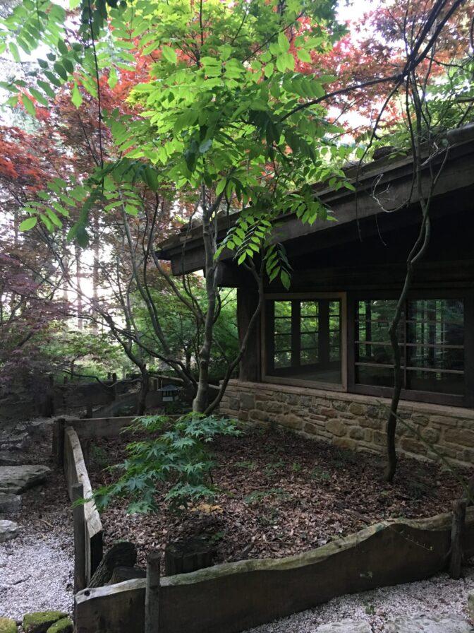 casa giapponese con aceri  dove dormire in Italia
