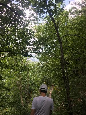 sentiero nel bosco con persona
