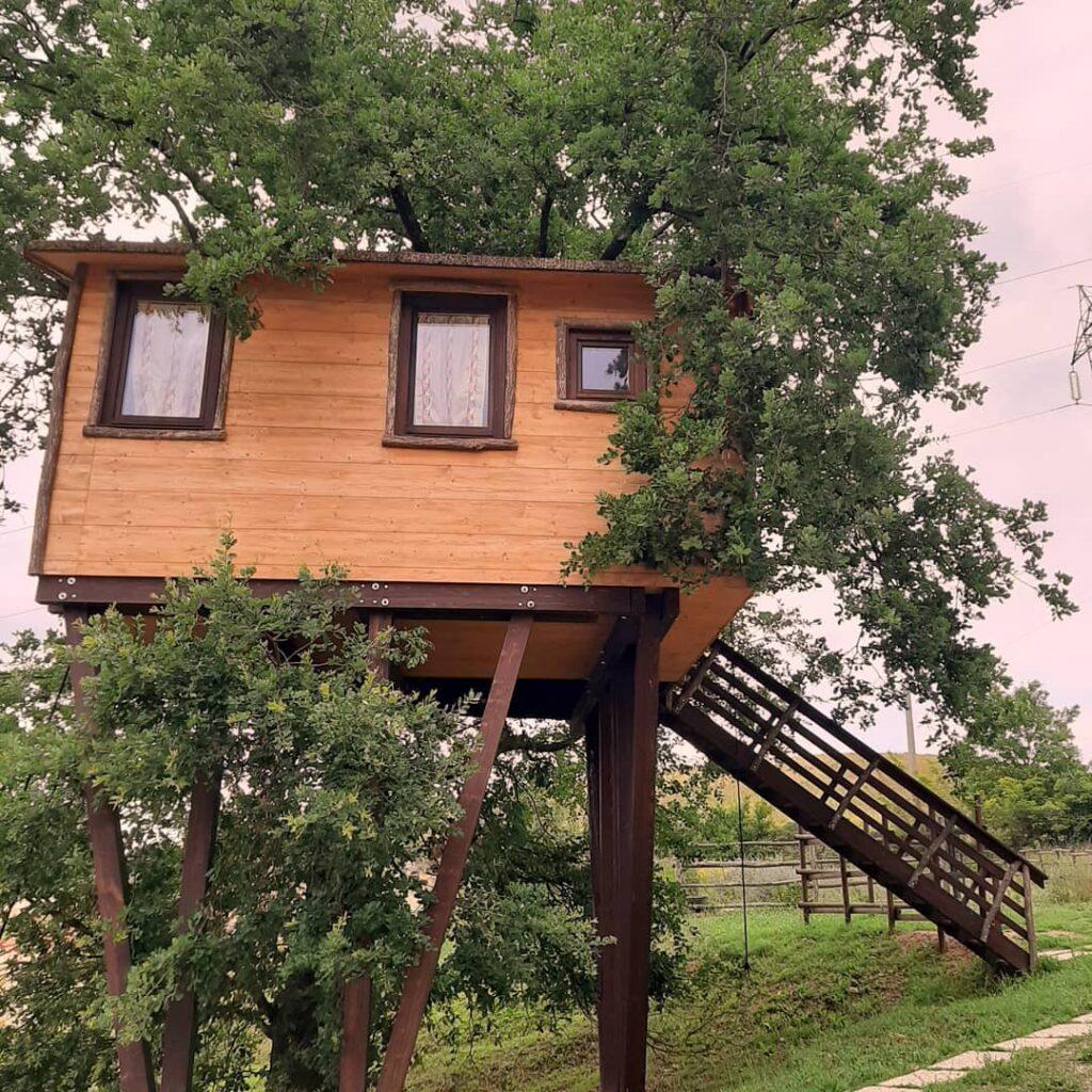 casa su un albero con scala di legno