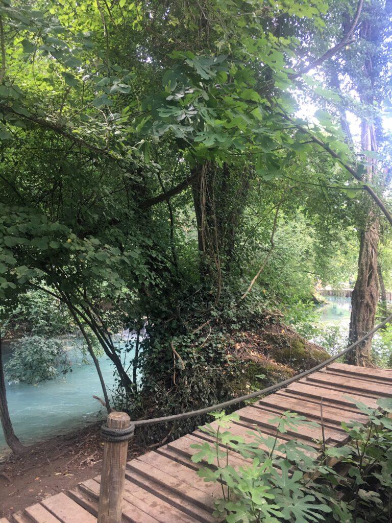 ponte legno su fiume percorso