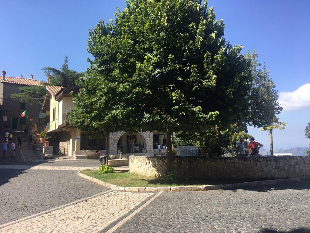 piazza con albero e persone