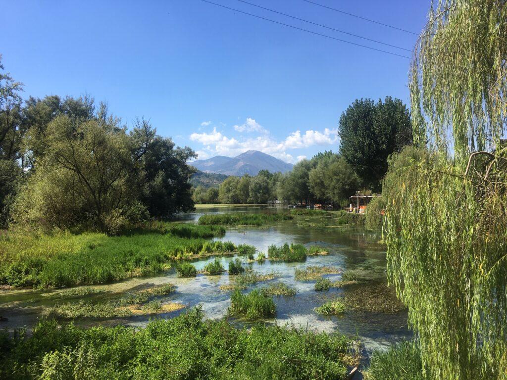 lago e vegetazione con alberi