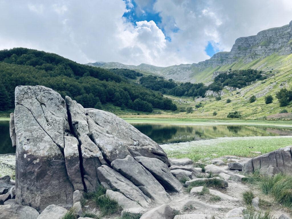 lago con natura e sassi